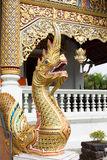 Naga traditional at temple Stock Images