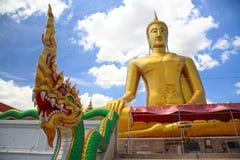Nagabeeldhouwwerk tegen het grote gouden standbeeld van Boedha Stock Afbeelding