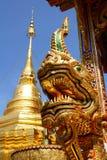 Nagaen Royaltyfri Foto