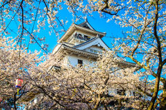 Nagahama Castle Royalty Free Stock Photo