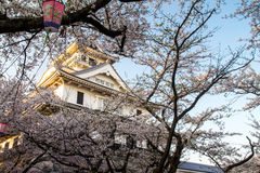 Nagahama Castle Stock Photo