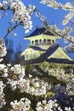Nagahama Japan museum av historia arkivbild