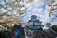 Nagahama slott Royaltyfria Foton