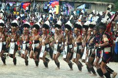 nagaland Индии hornbill празднества Стоковое Изображение RF