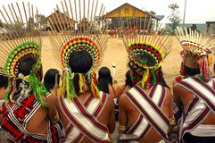 nagaland de l'Inde de hornbill de festival Photographie stock