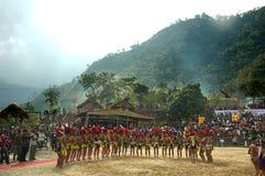 nagaland de l'Inde de hornbill de festival Image stock