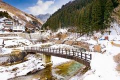 Nagano-Schnee-Affe-Park Lizenzfreies Stockfoto