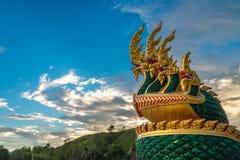 Nagas och himmel Royaltyfri Fotografi