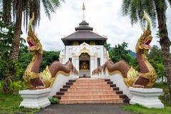 Nagas stairs Royalty Free Stock Photos