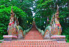 Nagas Treppen von Wat Doi Suthep Stockbilder