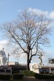 Nagasaki fred parkerar arkivfoto