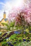 Nagashima Japan. Flower Garden in Nagashima Japan Royalty Free Stock Image