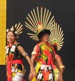 Nagastam av Nagaland, Indien Arkivfoto