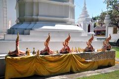 Nagastatue von Thailand vor der weißen Pagode Lizenzfreie Stockbilder