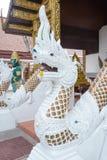 Nagastaty, buddistisk drake Royaltyfri Bild