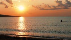Nageur femelle en mer calme au coucher du soleil clips vidéos