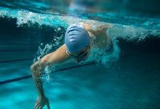 nageurs image stock