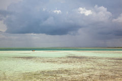Nageurs dans le rivage peu profond de mer des Caraïbes, île de Cayo Guillermo, Images stock