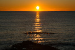 Nageurs en mer au lever de soleil Image stock