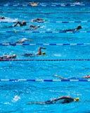 Nageurs pendant le triathlon Images libres de droits