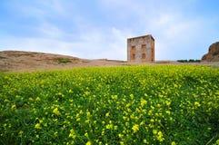naghshrostam shiraz för e iran Arkivfoto