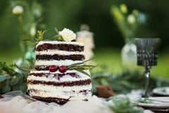 Nagi ślubny tort na stole w wieśniaka stylu Zdjęcia Stock