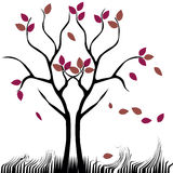 Nagi drzewo Fotografia Royalty Free