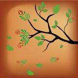 Nagi drzewo w jesieni Fotografia Royalty Free