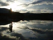 Nagi Loon jeziora ranek Obraz Stock