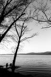 Nagie, nagie drzewo sylwetki na Trasimeno jeziornym brzeg Umbria, Włochy Fotografia Stock
