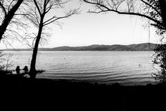 Nagie, nagie drzewo sylwetki na Trasimeno jeziornym brzeg Umbria, Włochy Fotografia Royalty Free
