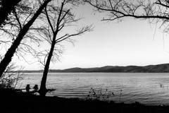 Nagie, nagie drzewo sylwetki na Trasimeno jeziornym brzeg Umbria, Włochy Zdjęcie Royalty Free