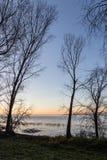 Nagie, nagie drzewo sylwetki przy zmierzchem na Trasimeno jeziornym brzeg Umbria, Włochy Obrazy Stock
