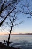Nagie, nagie drzewo sylwetki przy zmierzchem na Trasimeno jeziornym brzeg Umbria, Włochy Obrazy Royalty Free