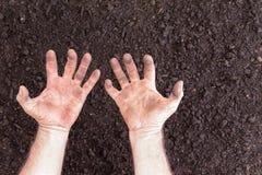 Nagie ręki z zaciskającym wyrażeniem nad nagą ziemią Fotografia Royalty Free