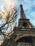 Nagie zim gałąź obramiają wieżę eifla przy zmierzchem na zima dniu Obraz Stock