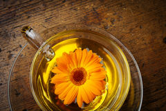 Nagietek herbata Fotografia Stock