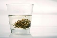 Nagietek herbaty przygotowanie Zdjęcia Stock