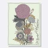 Nagietków kwiaty royalty ilustracja