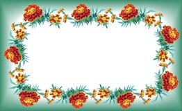Nagietków kwiaty hgreen ramowego quadr royalty ilustracja