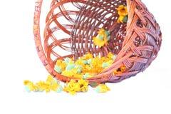 nagietka kolor żółty Zdjęcie Royalty Free