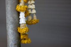 Nagietka kwiatu girlanda wieszał suszyć zdjęcia royalty free
