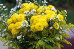 Nagietka kwiatu kolor żółty w ślubnej ceremonii Obrazy Stock