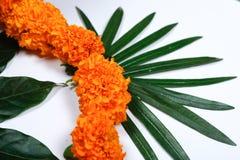 Nagietka kwiatu rangoli projekt dla Diwali festiwalu, Indiańska festiwalu kwiatu dekoracja obraz stock