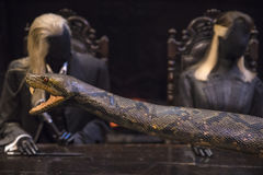 Nagini the Snake Stock Image