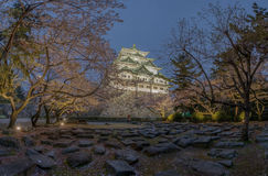 Nagoya castle with the cherry blossoms Royalty Free Stock Images