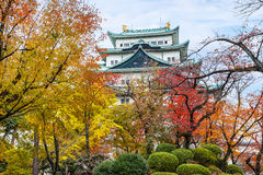 Nagoya Castle in Japan Royalty Free Stock Photo