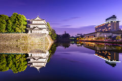 Nagoya Castle Moat Royalty Free Stock Image