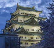 Nagoya Castle 8. Night scene of Nagoya Castle with Sakura foreground Stock Images