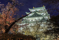 Nagoya Castle 10 Stock Photo